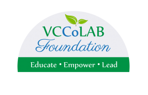 2016_CoLAB_Foundation logo