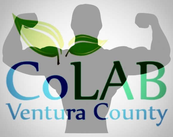 A Better, Stronger VC CoLAB in 2016