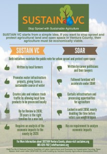 sustain-vc-infographic 2
