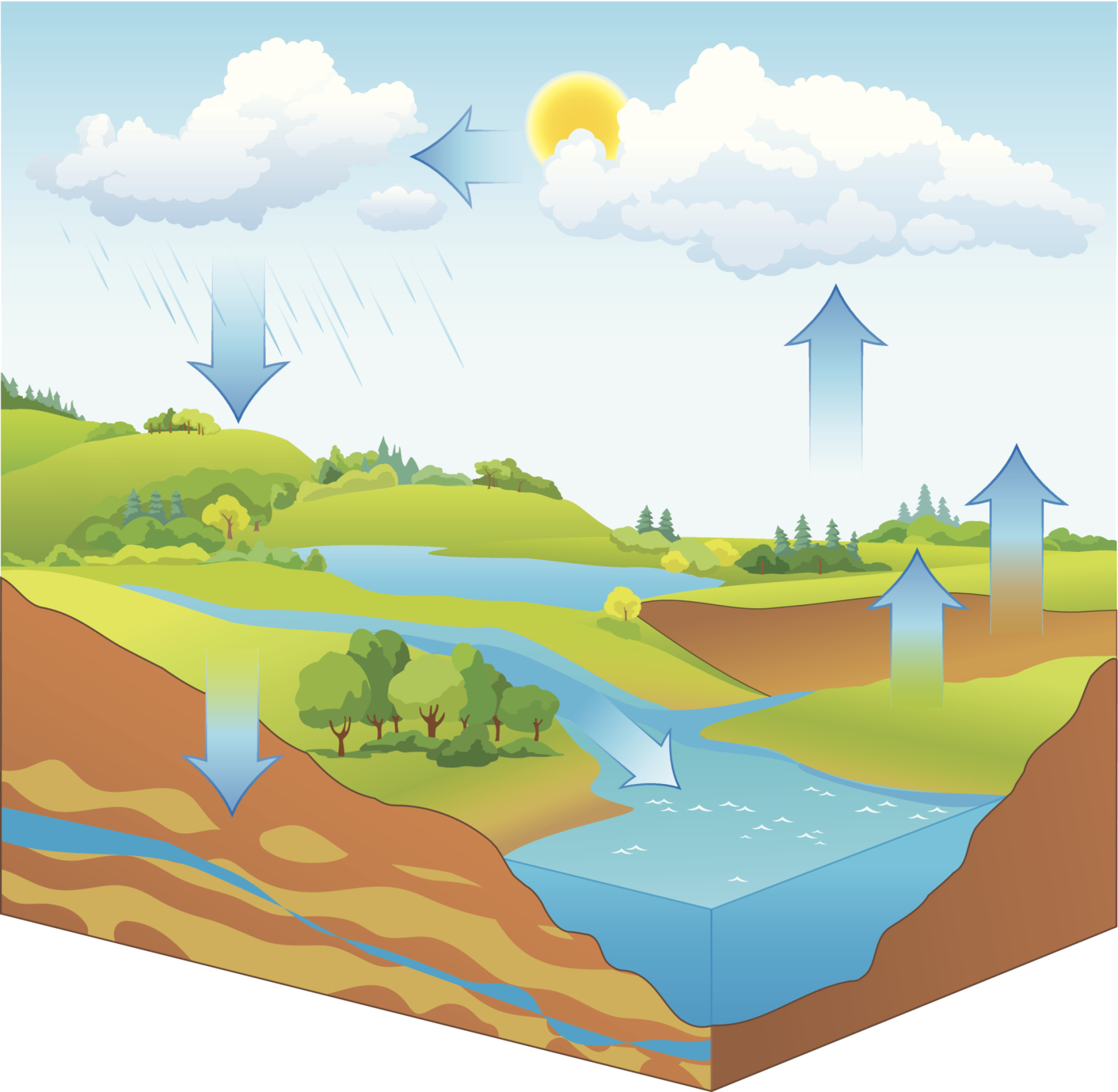 drought challenged farmers collaborate to sustain local groundwater