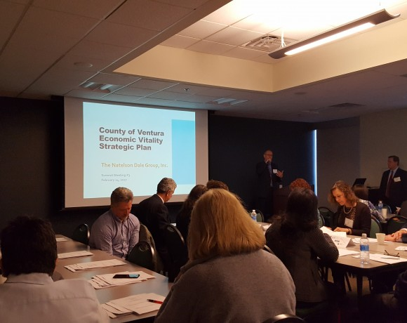 Economic Vitality Strategies Considered by County CEOs Office